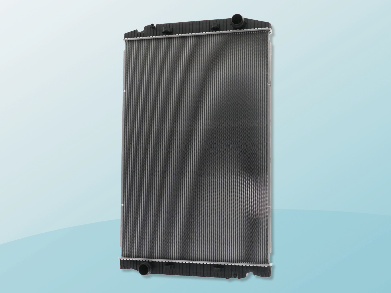 AKS Dasis radiador